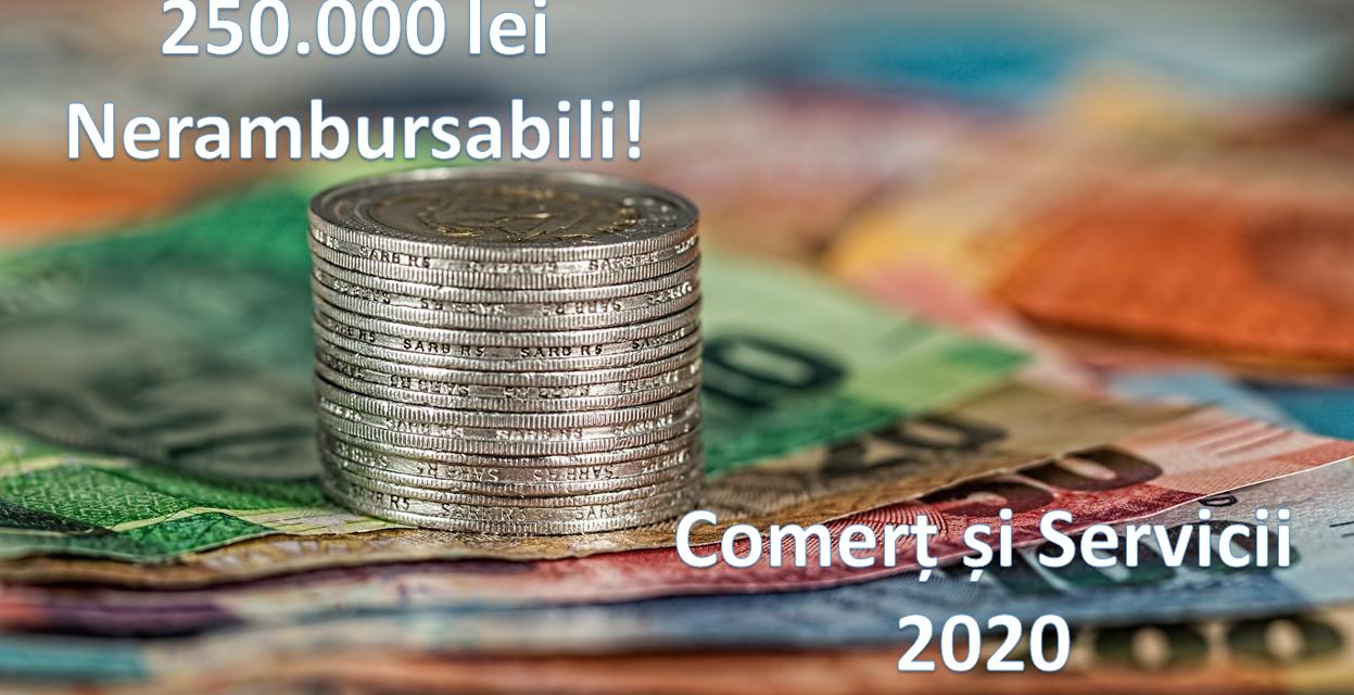 https://wisebusinessplans.ro/wp-content/uploads/2020/03/COMERT-si-SERVICII-250000-Nerambursabili-1247x640.png