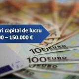 Granturi capital de lucru 2000 - 150 mii euro