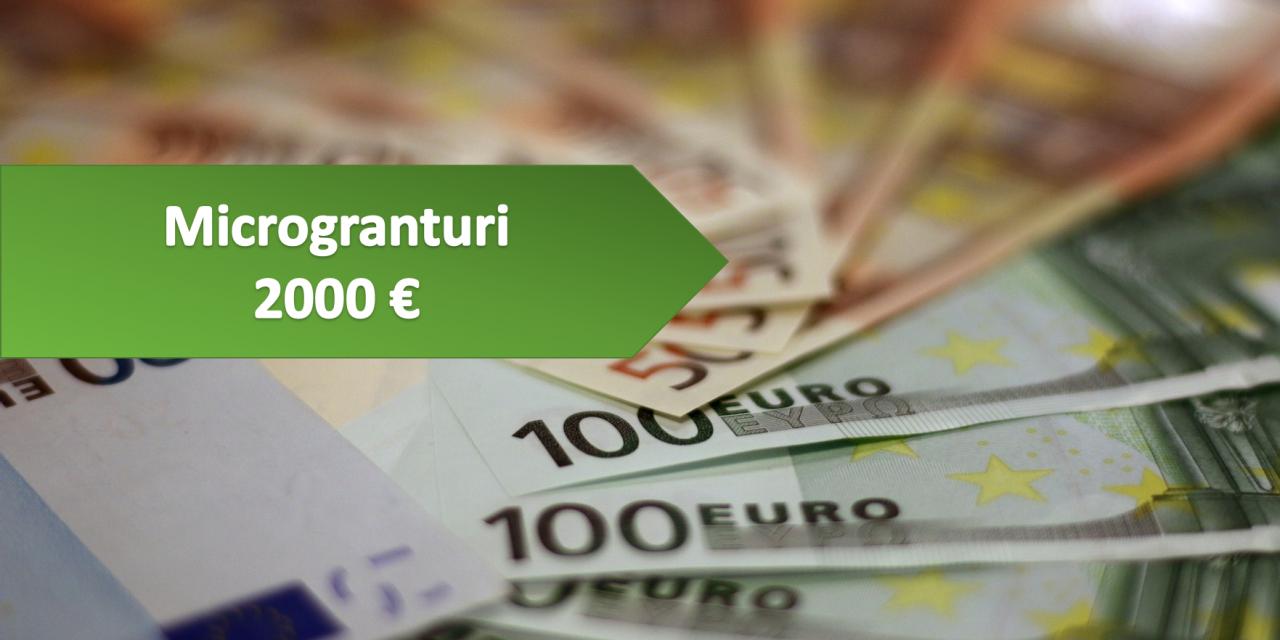 https://wisebusinessplans.ro/wp-content/uploads/2020/09/Microgranturi-de-2000-de-euro-1280x640.png